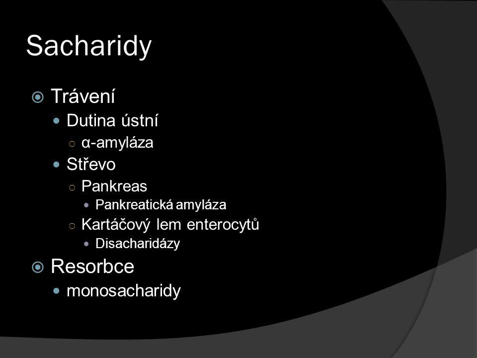 Sacharidy Trávení Resorbce Dutina ústní Střevo monosacharidy α-amyláza
