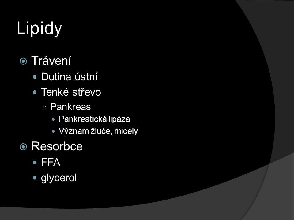 Lipidy Trávení Resorbce Dutina ústní Tenké střevo FFA glycerol
