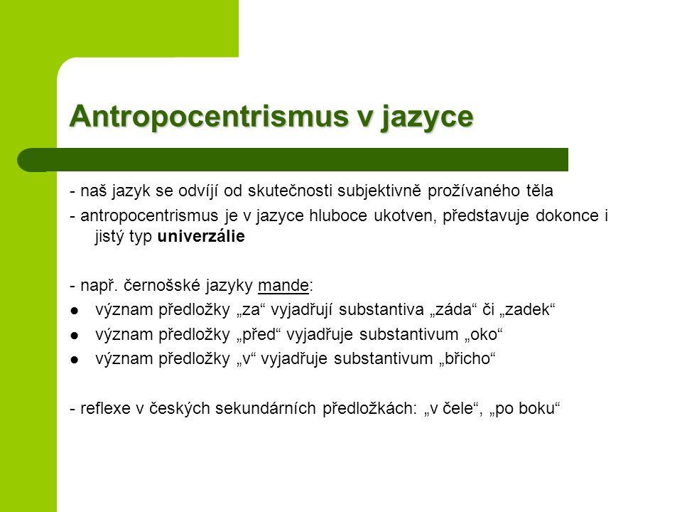 Antropocentrismus v jazyce