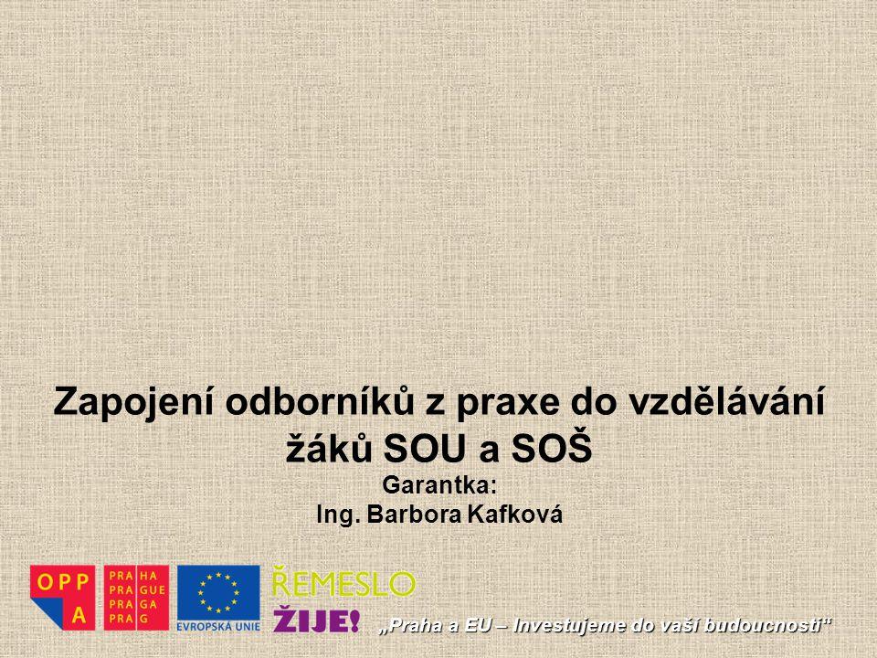 Zapojení odborníků z praxe do vzdělávání žáků SOU a SOŠ Garantka: Ing