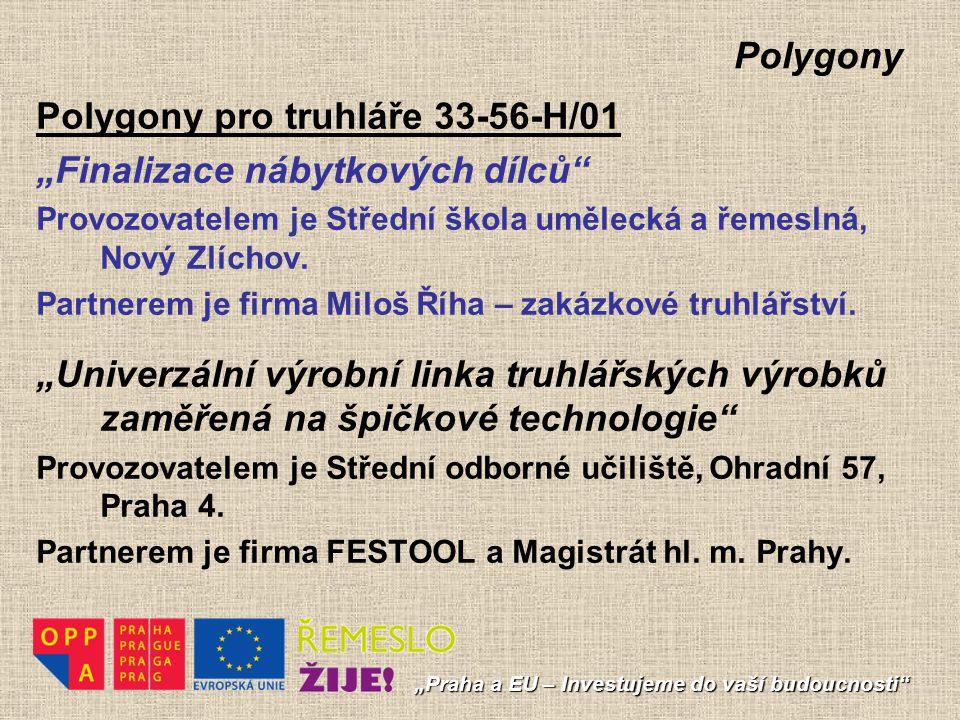 """Polygony pro truhláře 33-56-H/01 """"Finalizace nábytkových dílců"""