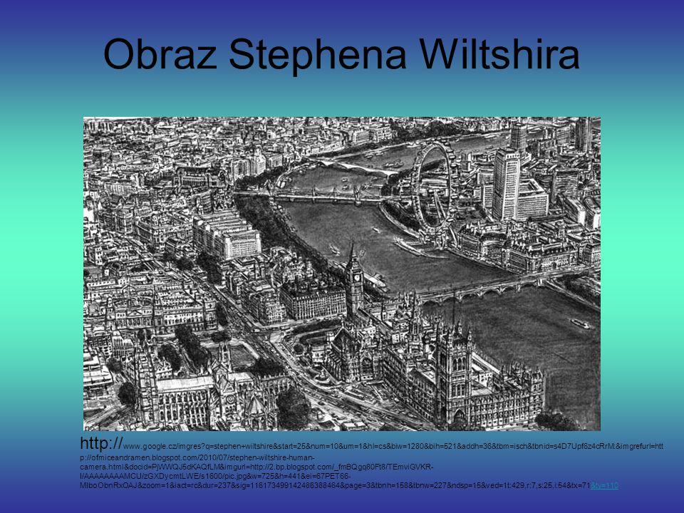 Obraz Stephena Wiltshira