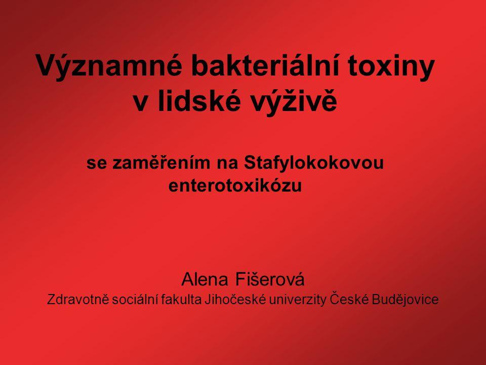 Zdravotně sociální fakulta Jihočeské univerzity České Budějovice