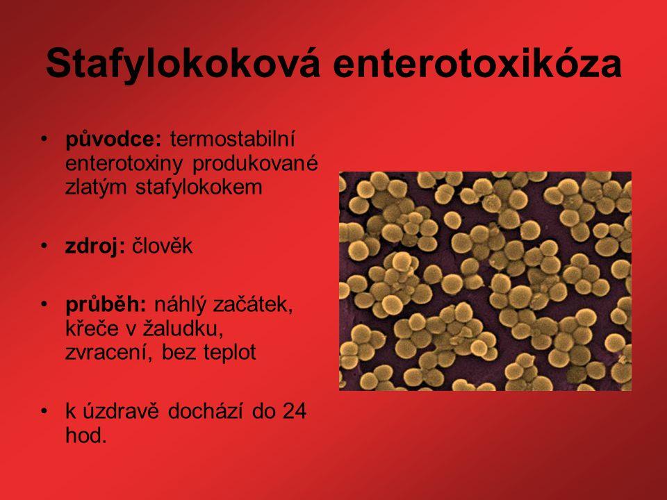 Stafylokoková enterotoxikóza