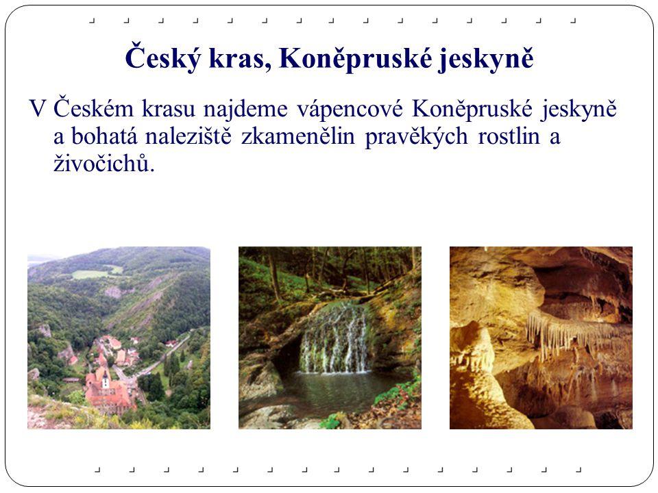 Český kras, Koněpruské jeskyně