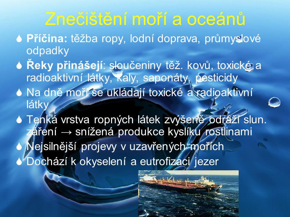 Znečištění moří a oceánů