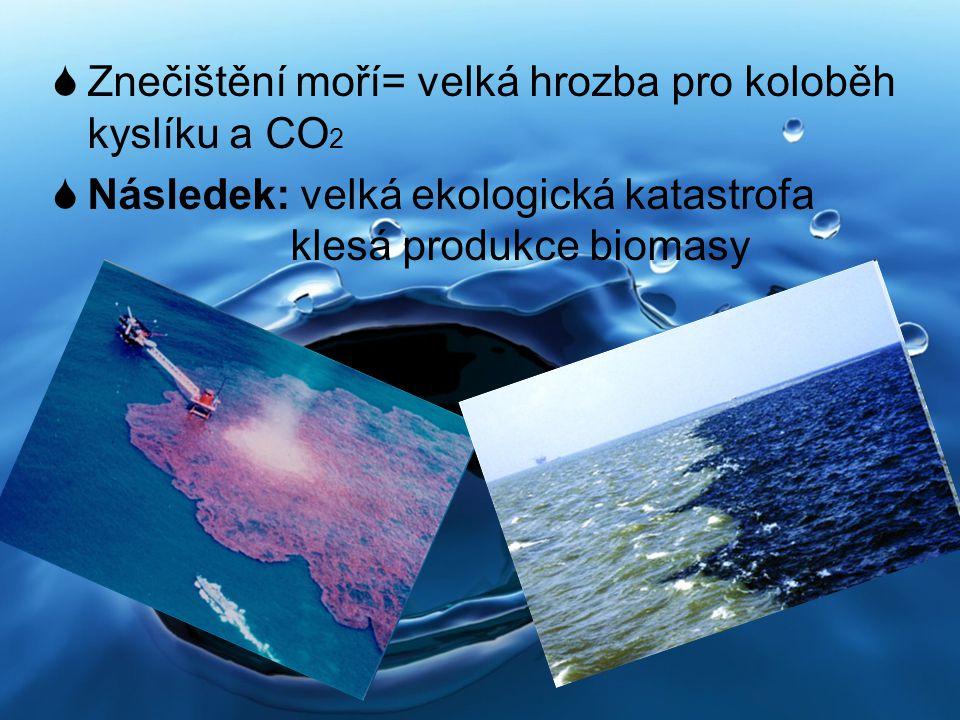 Znečištění moří= velká hrozba pro koloběh kyslíku a CO2