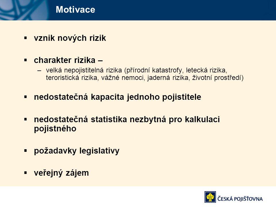 Motivace vznik nových rizik charakter rizika –
