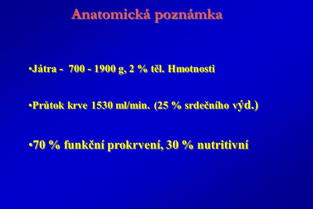 Anatomická poznámka 70 % funkční prokrvení, 30 % nutritivní