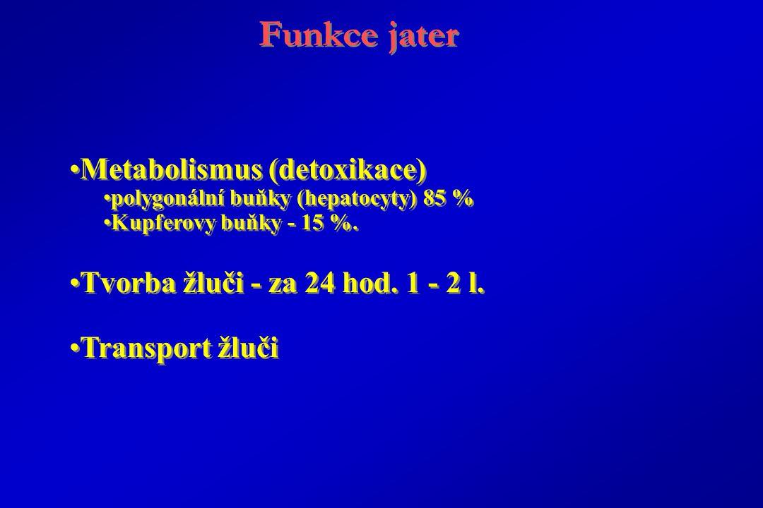 Funkce jater Metabolismus (detoxikace)