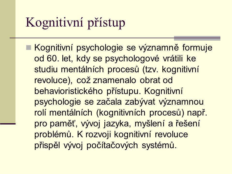 Kognitivní přístup