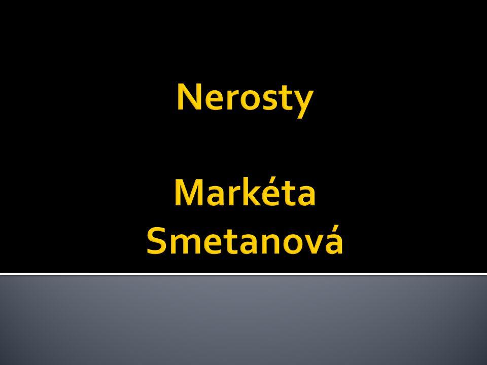 Nerosty Markéta Smetanová