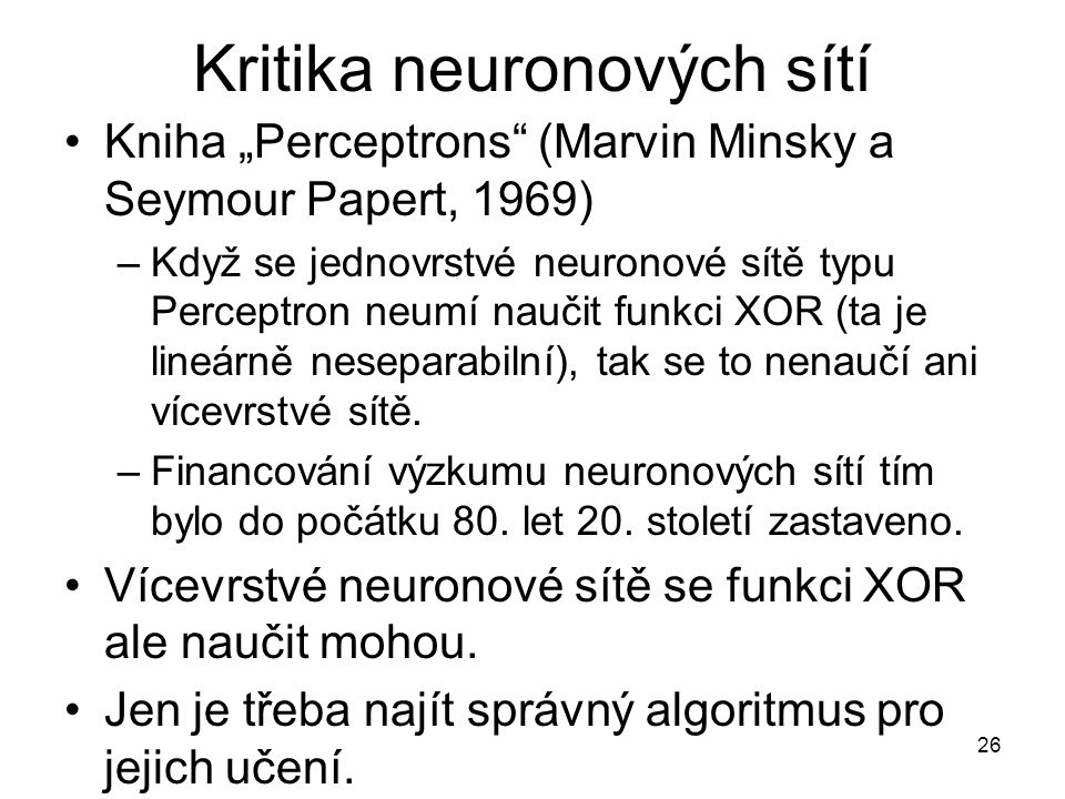 Kritika neuronových sítí