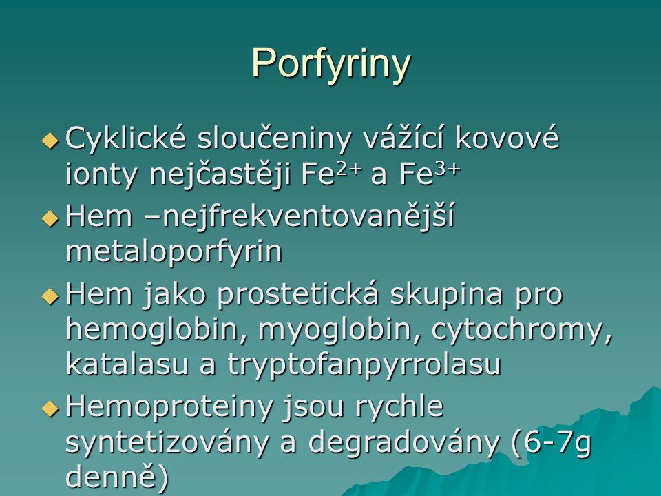 Porfyriny Cyklické sloučeniny vážící kovové ionty nejčastěji Fe2+ a Fe3+ Hem –nejfrekventovanější metaloporfyrin.