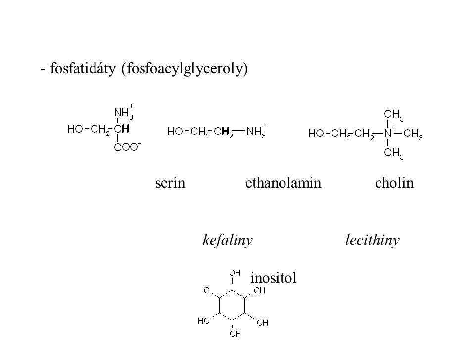 - fosfatidáty (fosfoacylglyceroly)