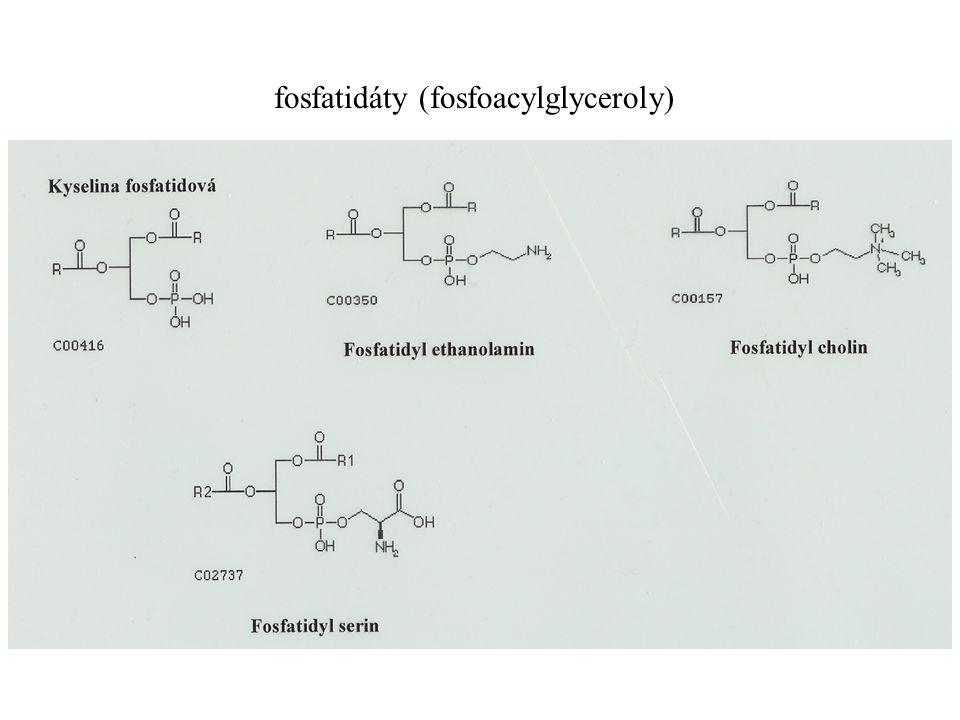 fosfatidáty (fosfoacylglyceroly)