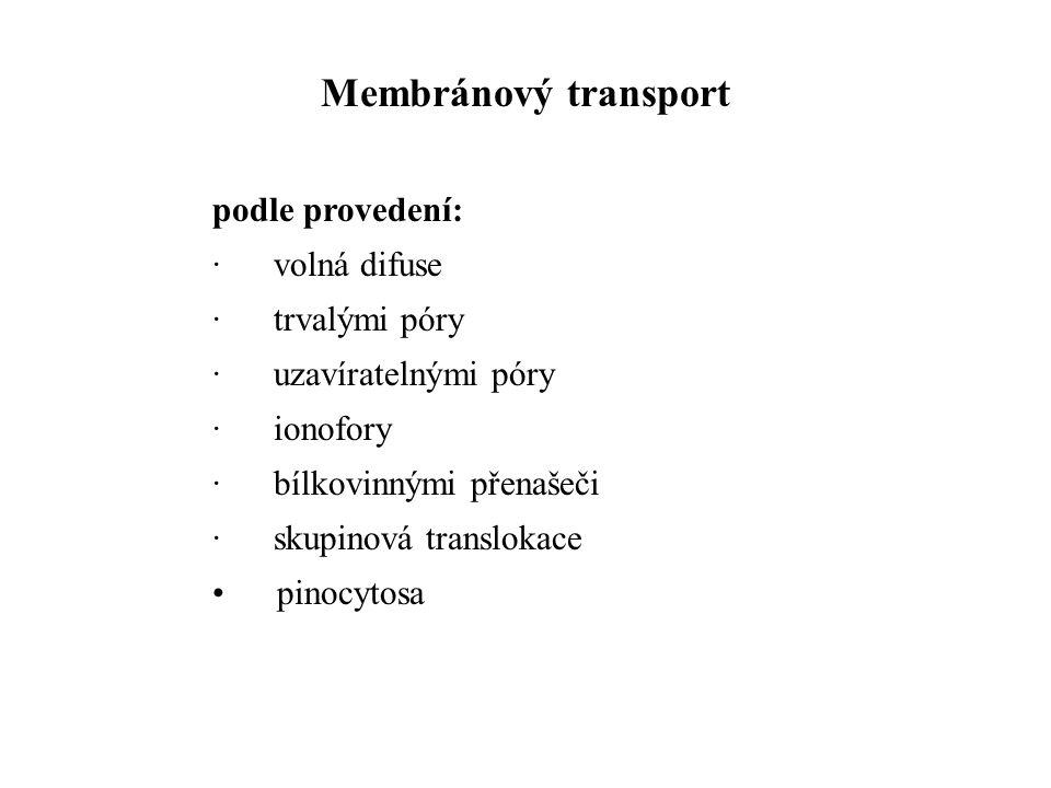 Membránový transport podle provedení: · volná difuse · trvalými póry