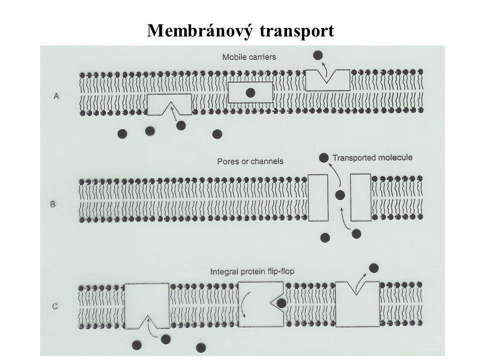 Membránový transport