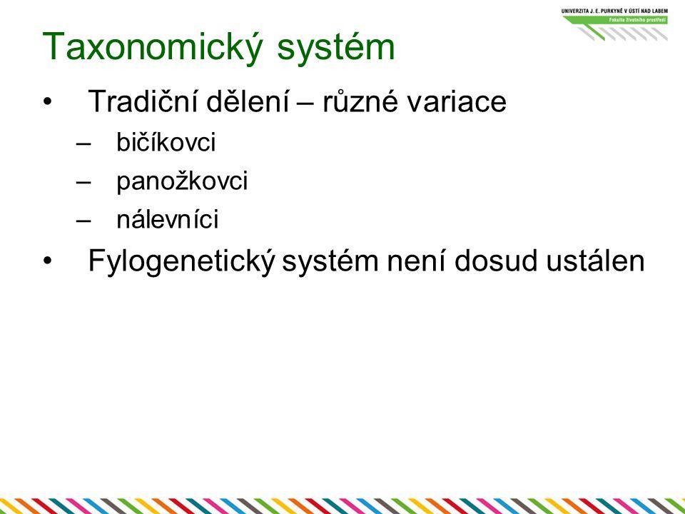 Taxonomický systém Tradiční dělení – různé variace