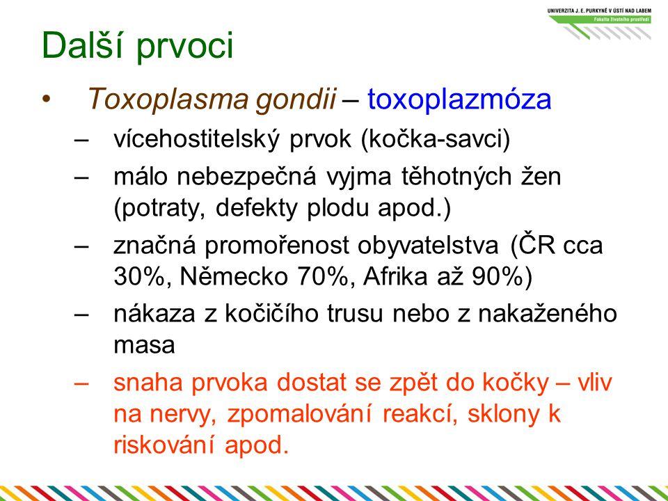 Další prvoci Toxoplasma gondii – toxoplazmóza