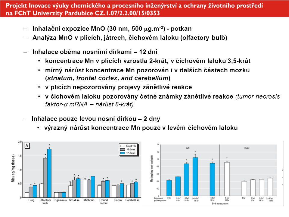 Inhalační expozice MnO (30 nm, 500 g.m-3) - potkan