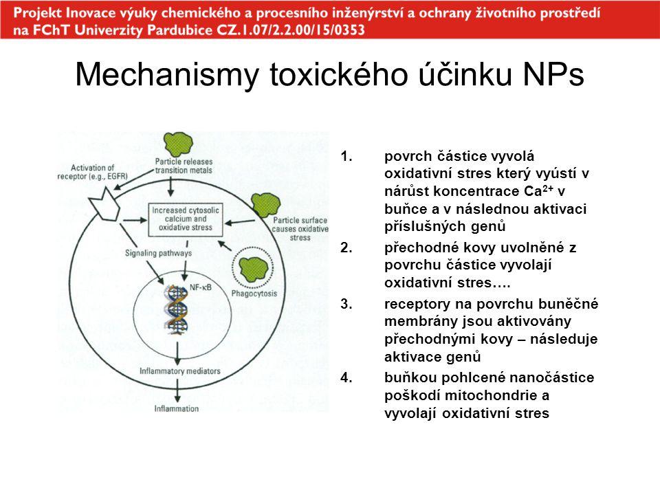 Mechanismy toxického účinku NPs