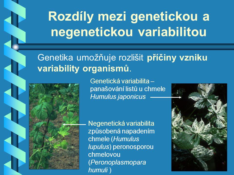 Rozdíly mezi genetickou a negenetickou variabilitou