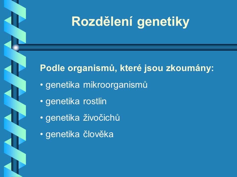 Rozdělení genetiky Podle organismů, které jsou zkoumány: