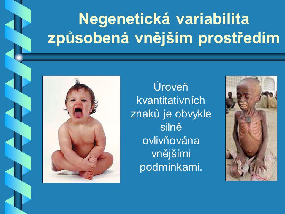 Negenetická variabilita způsobená vnějším prostředím