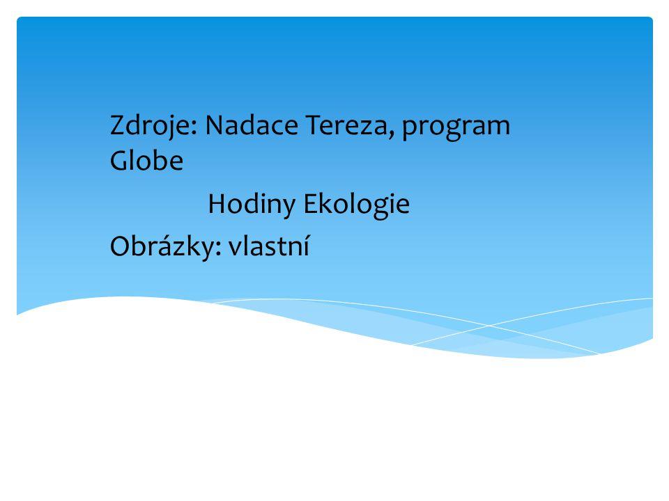 Zdroje: Nadace Tereza, program Globe