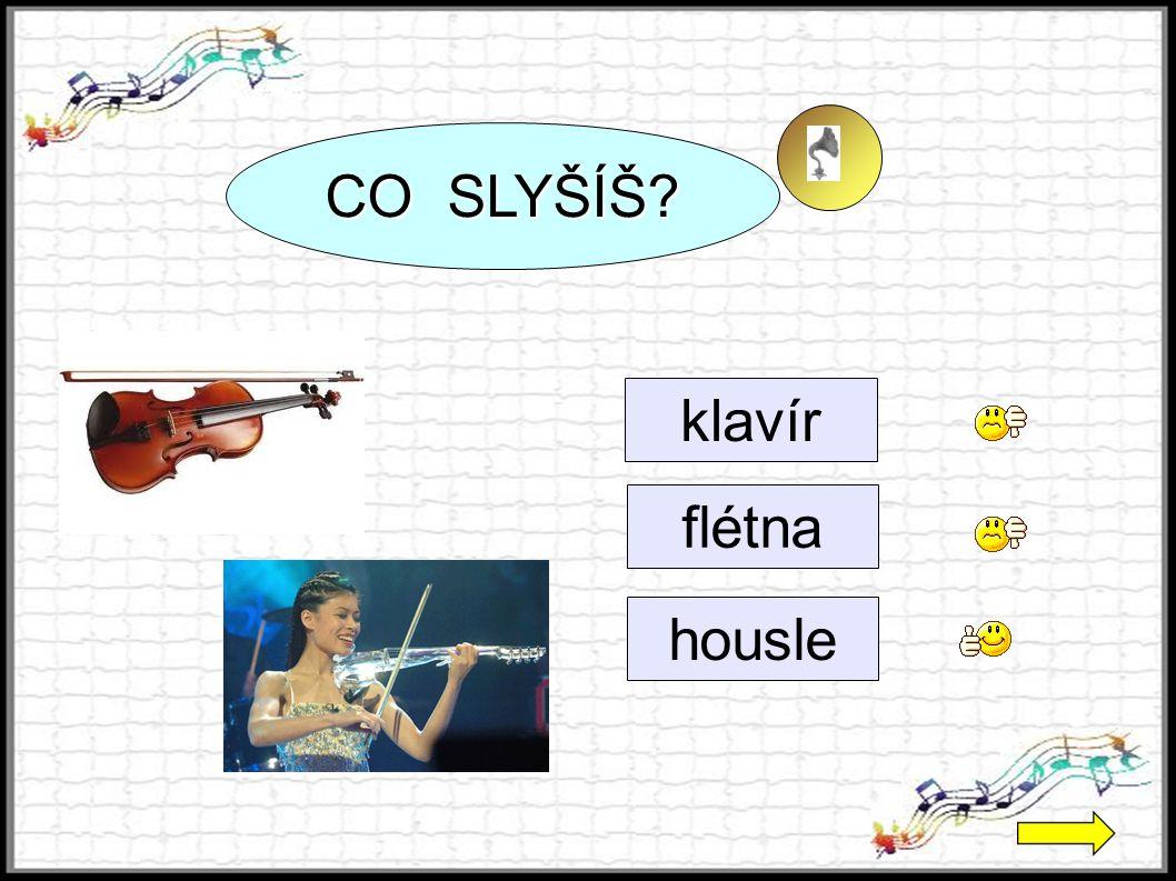 CO SLYŠÍŠ klavír flétna housle 2 2 2 2 2 2