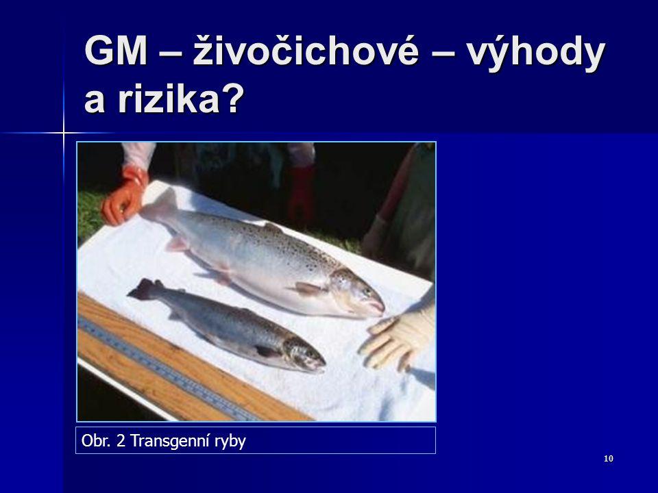 GM – živočichové – výhody a rizika