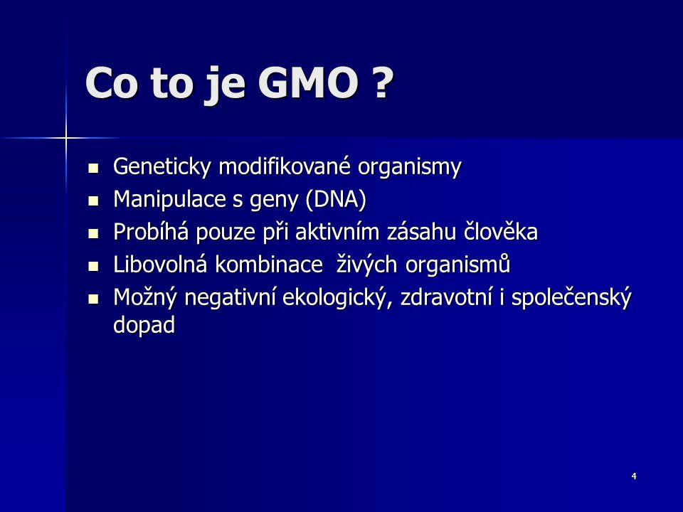 Co to je GMO Geneticky modifikované organismy