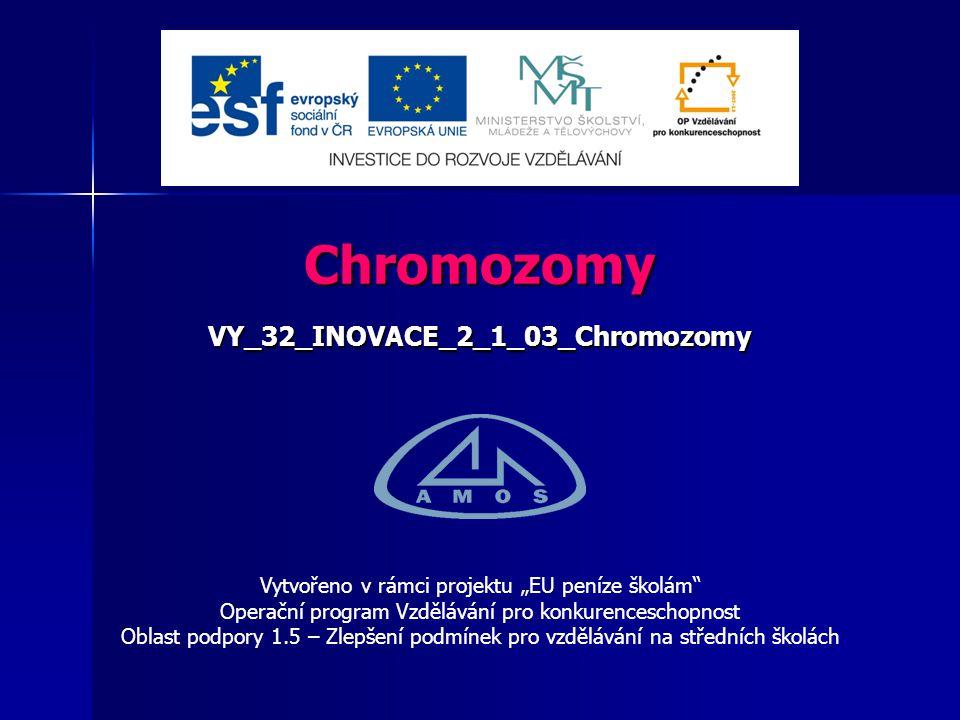VY_32_INOVACE_2_1_03_Chromozomy