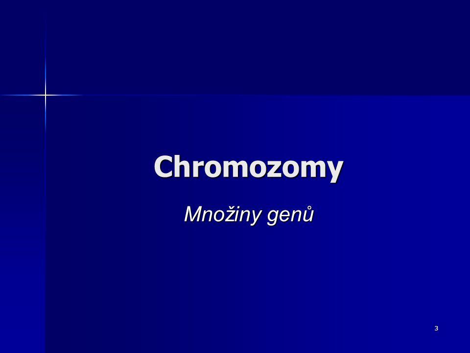 Chromozomy Množiny genů