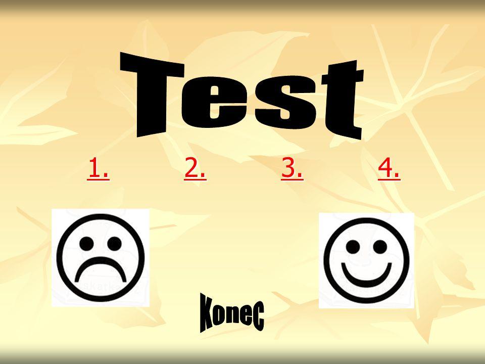 Test 1. 2. 3. 4. Konec