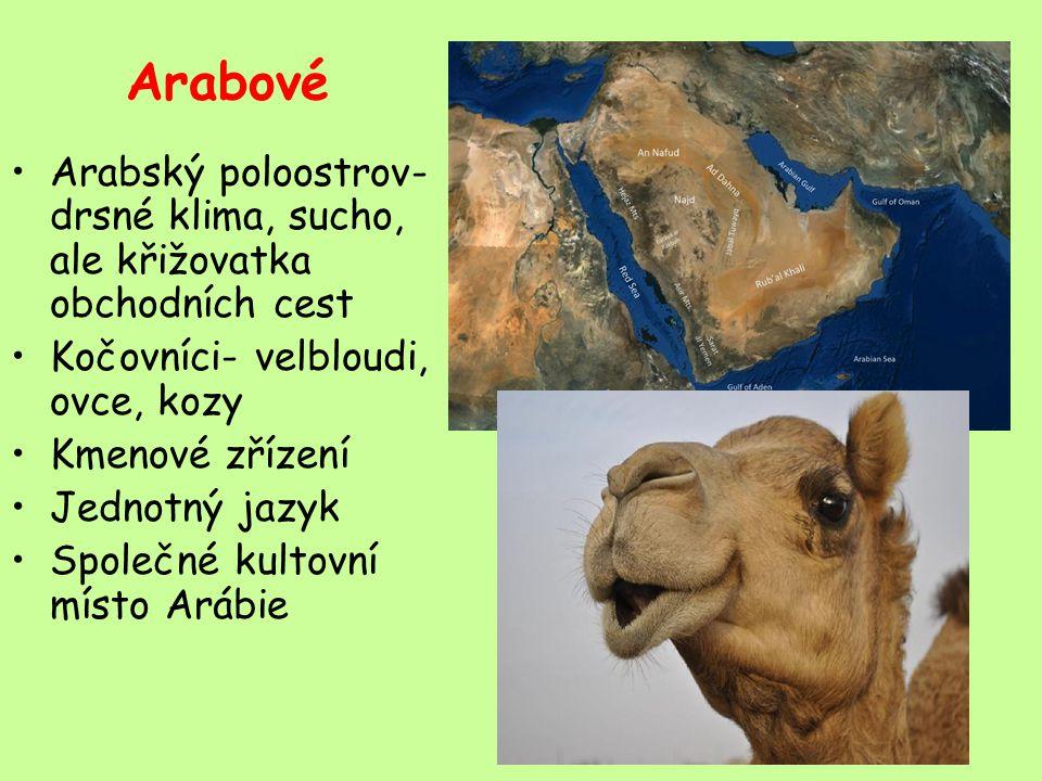 Arabové Arabský poloostrov- drsné klima, sucho, ale křižovatka obchodních cest. Kočovníci- velbloudi, ovce, kozy.