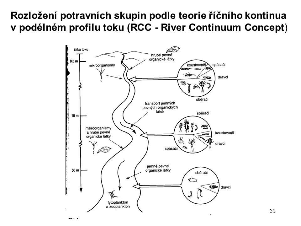 Rozložení potravních skupin podle teorie říčního kontinua v podélném profilu toku (RCC - River Continuum Concept)