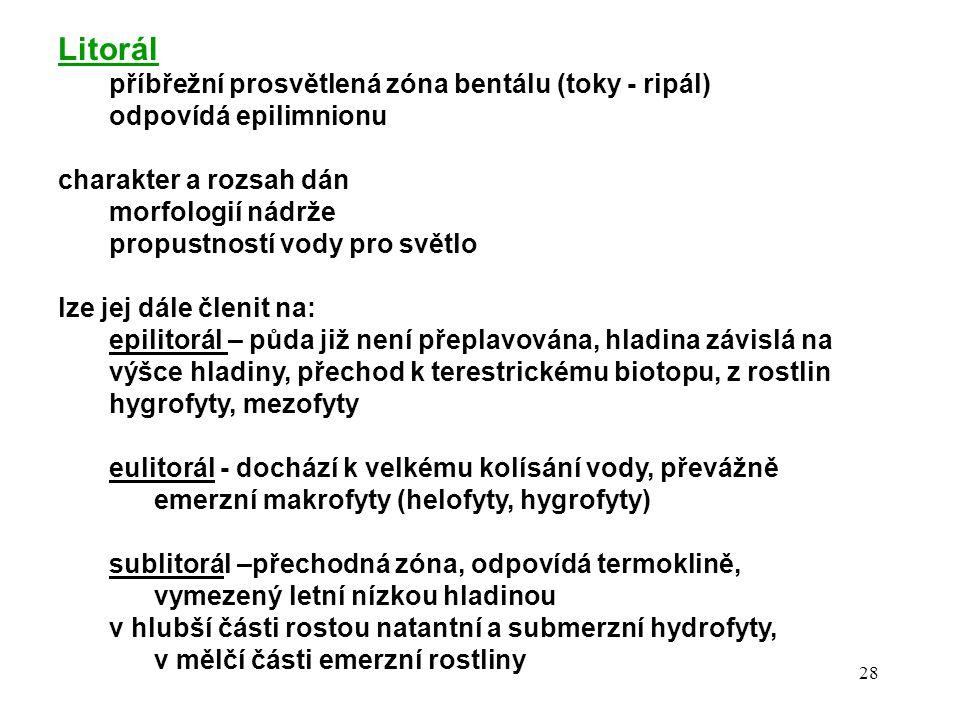 Litorál příbřežní prosvětlená zóna bentálu (toky - ripál)