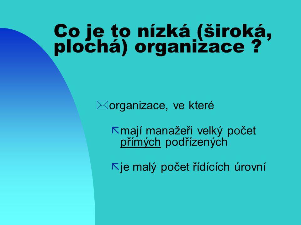 Co je to nízká (široká, plochá) organizace