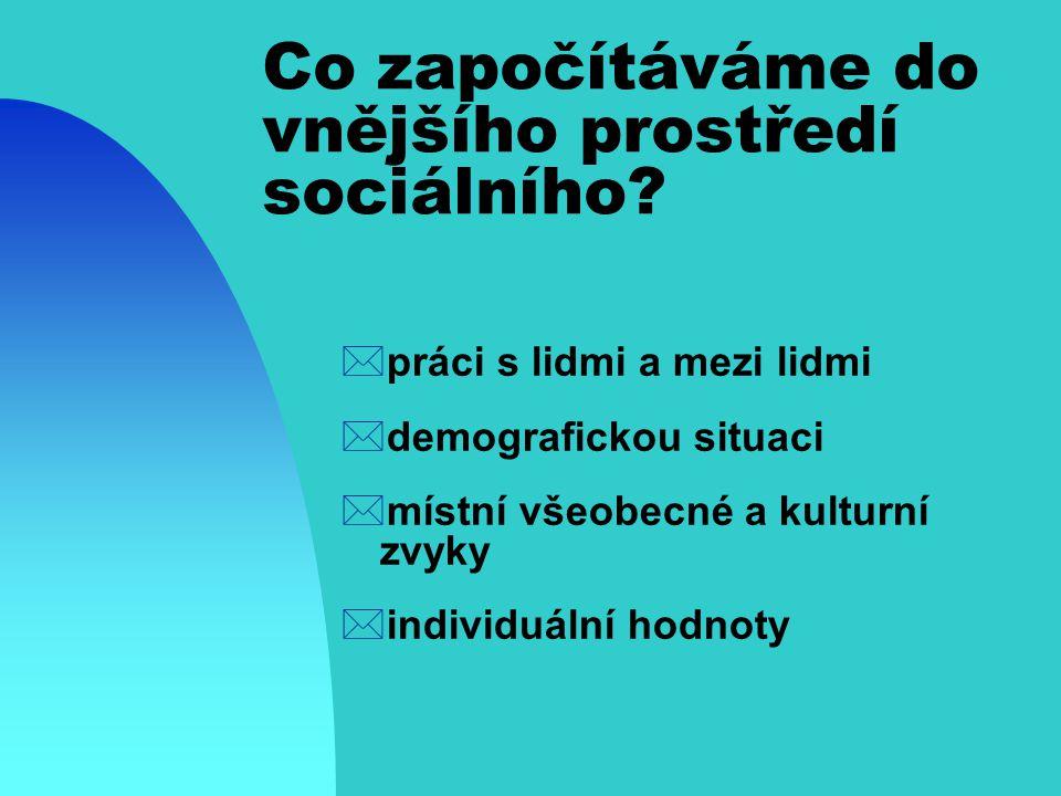 Co započítáváme do vnějšího prostředí sociálního