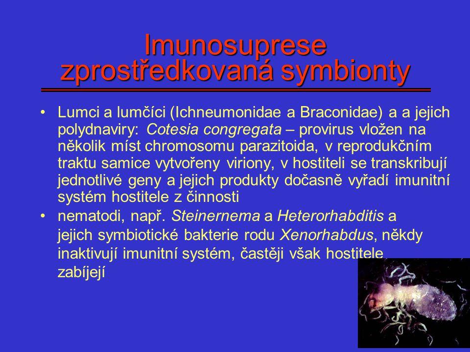 Imunosuprese zprostředkovaná symbionty