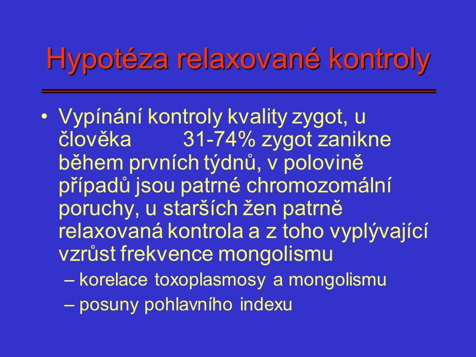 Hypotéza relaxované kontroly