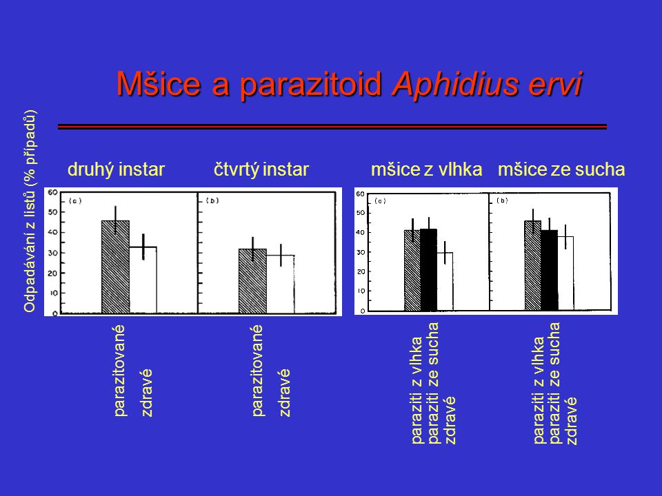Mšice a parazitoid Aphidius ervi