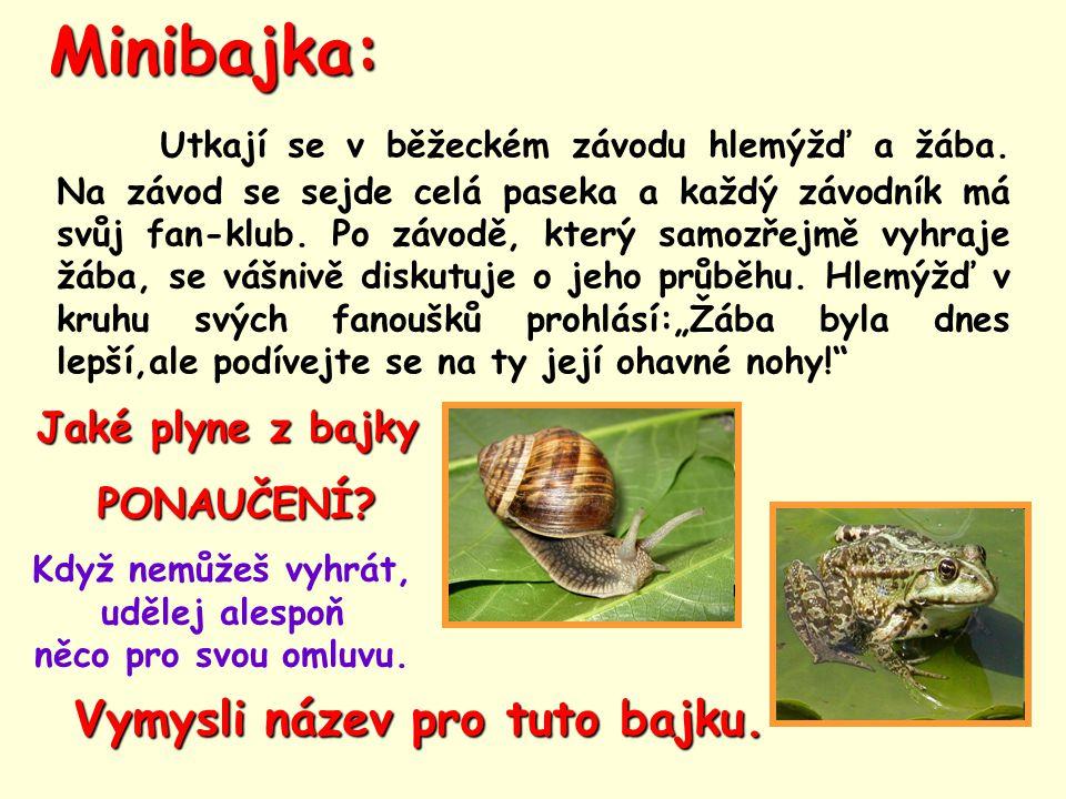 Minibajka: