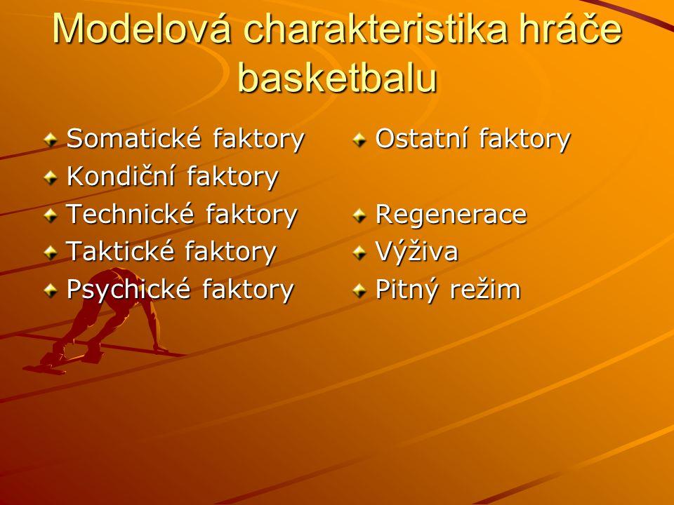 Modelová charakteristika hráče basketbalu