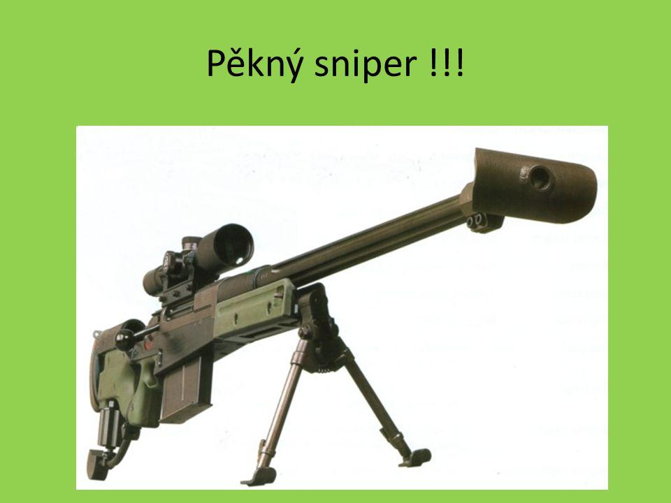 Pěkný sniper !!!
