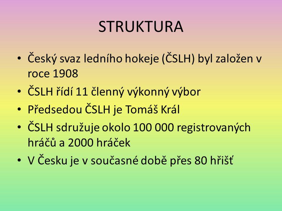 STRUKTURA Český svaz ledního hokeje (ČSLH) byl založen v roce 1908