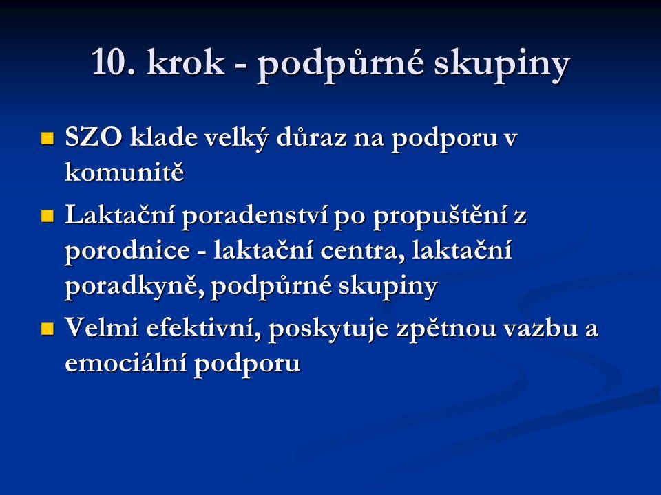 10. krok - podpůrné skupiny