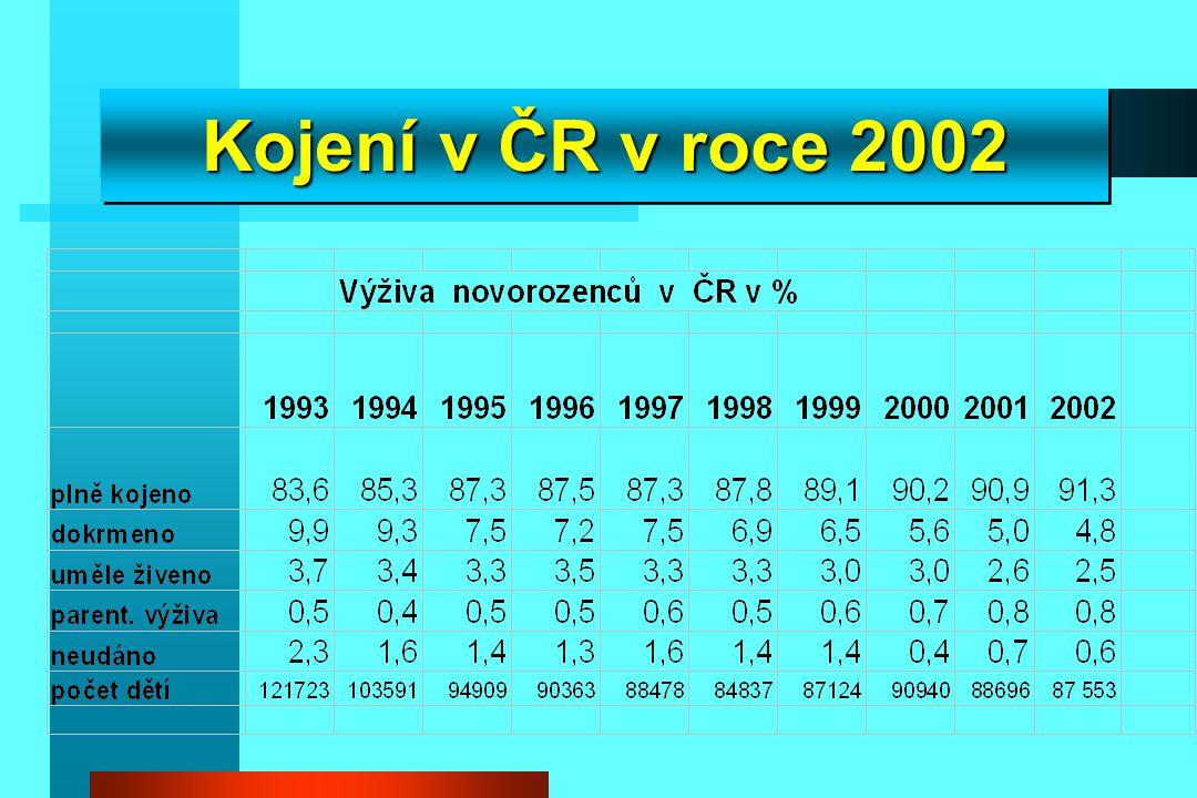 Kojení v ČR v roce 2002